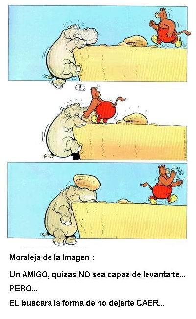 Para reir un rato..imagenes,moralejas e historietas
